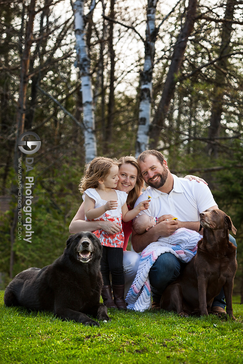My family and our dogs - Family Photo Session by DA Photography, www.daphotostudio.com, Sutton, ON